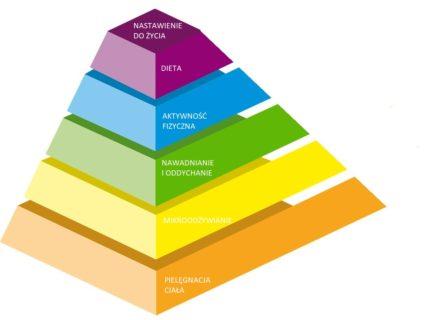 piramida długowieczności