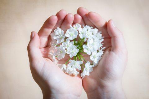 Jak pielęgnować skórę rąk w domu?